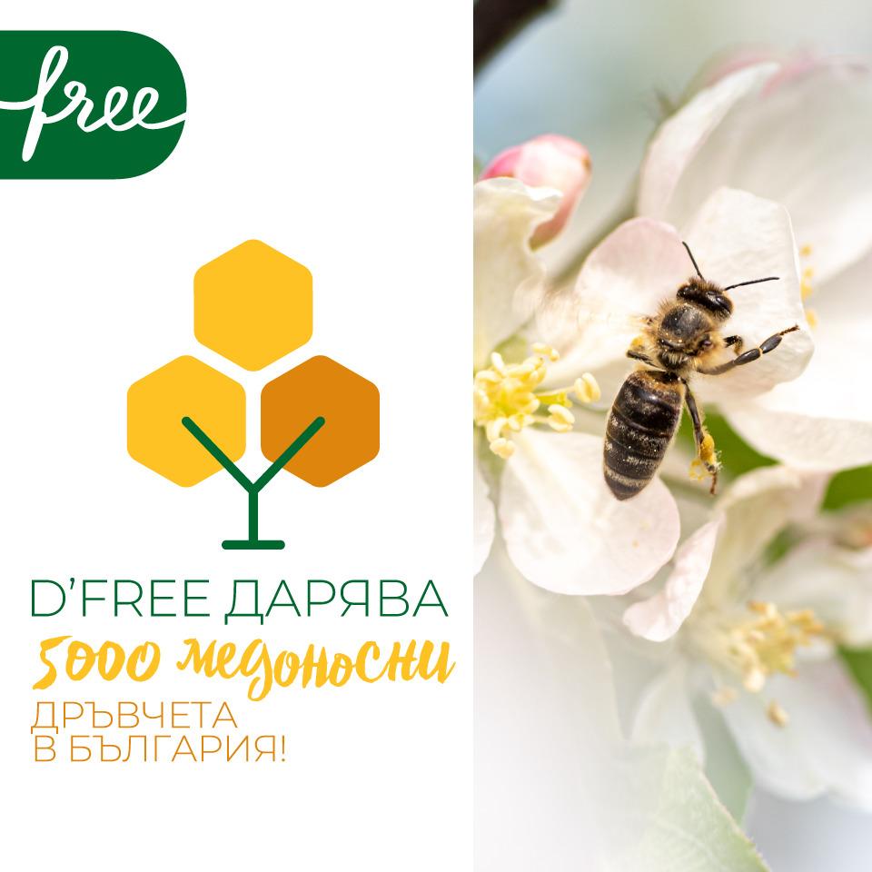 D'free дарява медоносни дръвчета